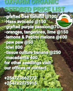 Oxfarm seedlings price list
